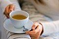 Японский чай ашитаба замедляет наступление старости