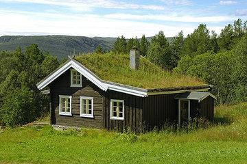 Экология дома: как сделать наше жилье экологичным
