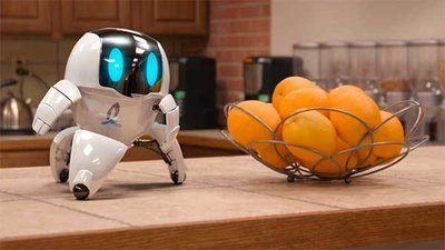 Роботы в нашей жизни: механические полицейские, черепахи, амебы и хирурги