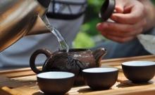 Американские исследователи рассказали, как правильно заваривать чай