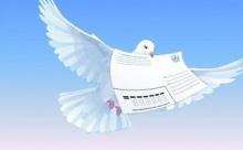 В Бельгии почтового голубя продали за 1,25 млн евро