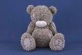 Тедди: медвежонка назвали в честь президента