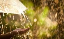 Продавец дождя