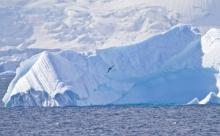 Тают ледники Антарктиды, повышается уровень воды в океанах